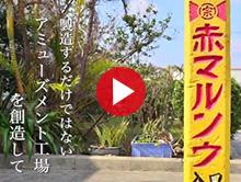 島一番の調味料屋 赤マルソウ 動画
