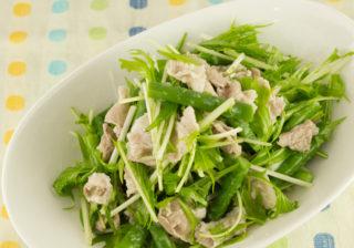 豚肉とインゲンのサラダ