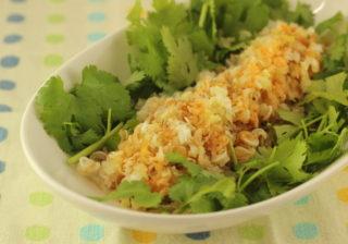 ミミガ―のよだれ鶏風パクチーサラダ