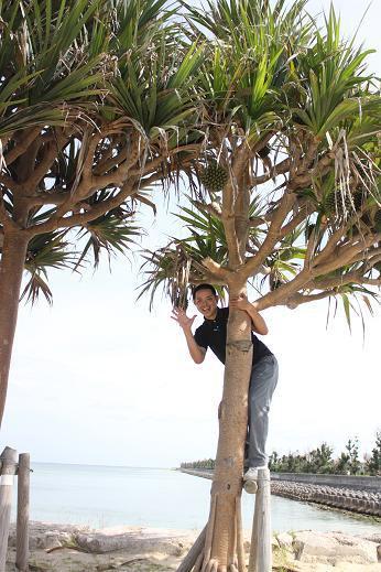 はいさーい!!赤マルソウなつきの楽しいなつKitchen・:*:・°-沖縄美々ビーチ糸満